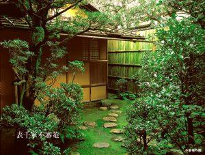 http://www.omotesenke.com/