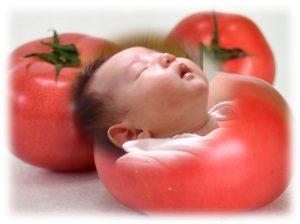 https://www.tomato-gakuen.info/arerugii.html